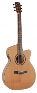 S&P Concert Hall CW GT Cedar A3T m/ bag